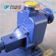自贡无堵塞卧式自吸泵铸铁电动排污泵