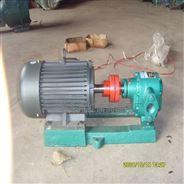 華潮2CG齒輪泵耐溫型齒輪油泵客戶點贊