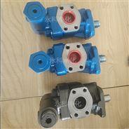 KF50RF1-D15齒輪泵電動煤油汽油輸送泵
